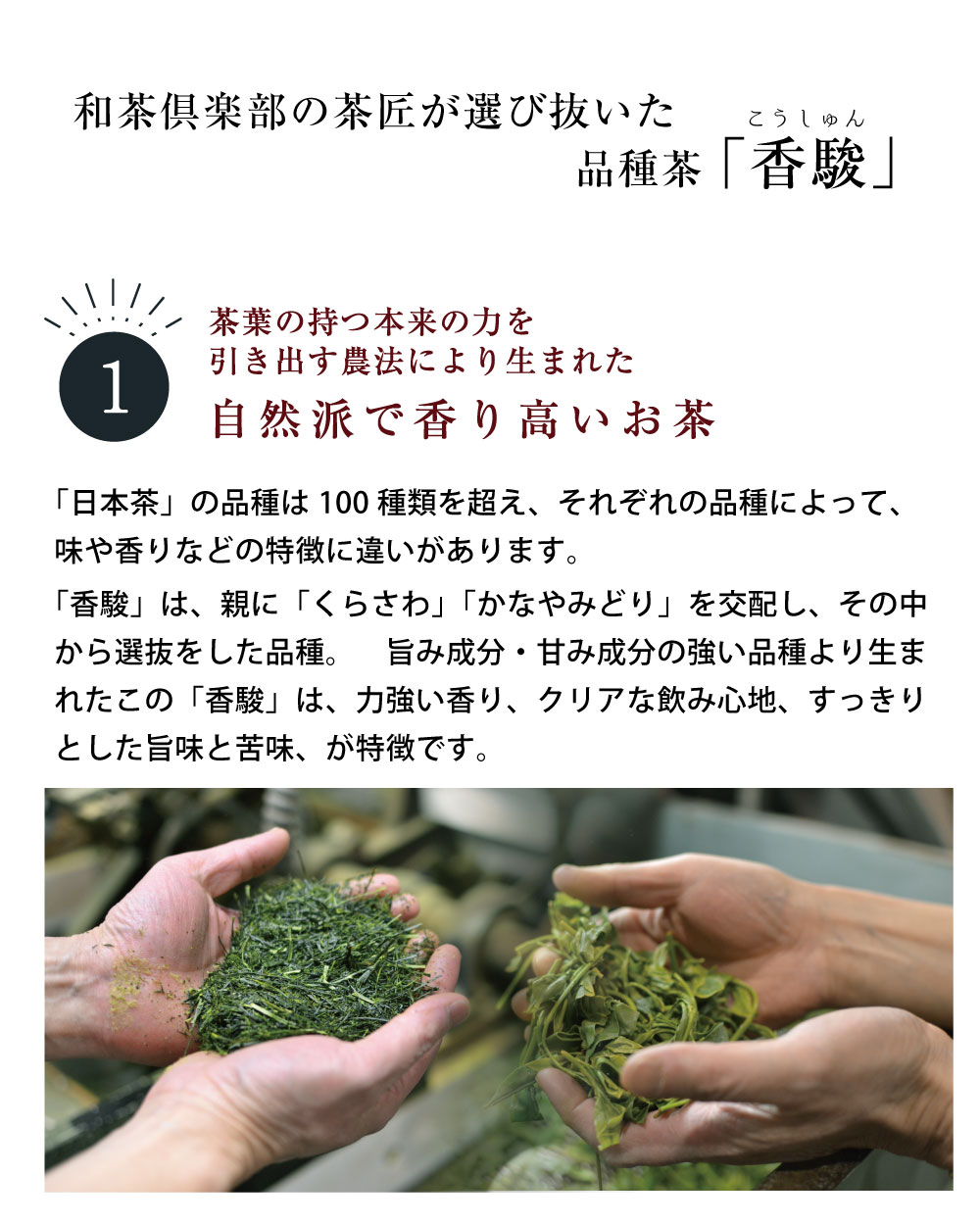 香駿の詳細�A