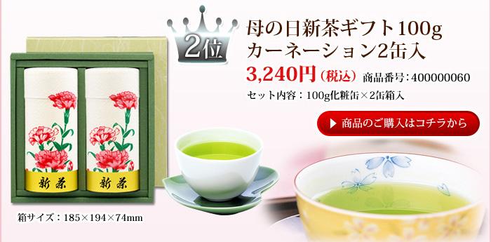 母の日新茶ギフト100g カーネーション2缶入
