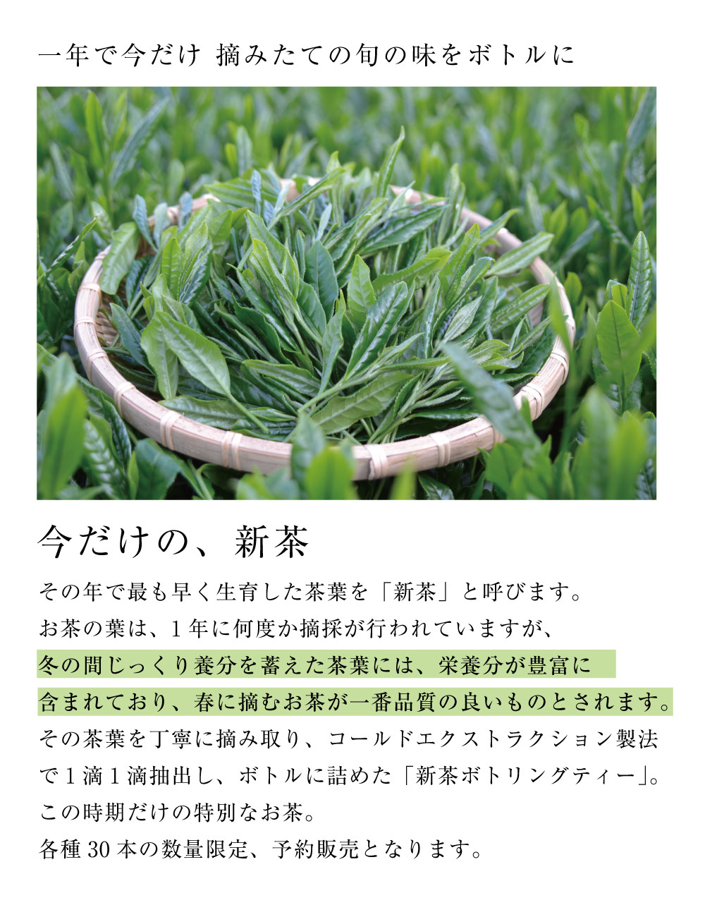 新茶とは 新茶ギフト 高級 お茶 日本茶 高級な贈り物