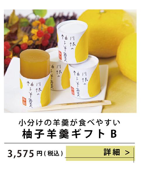柚子羊羹ギフトB